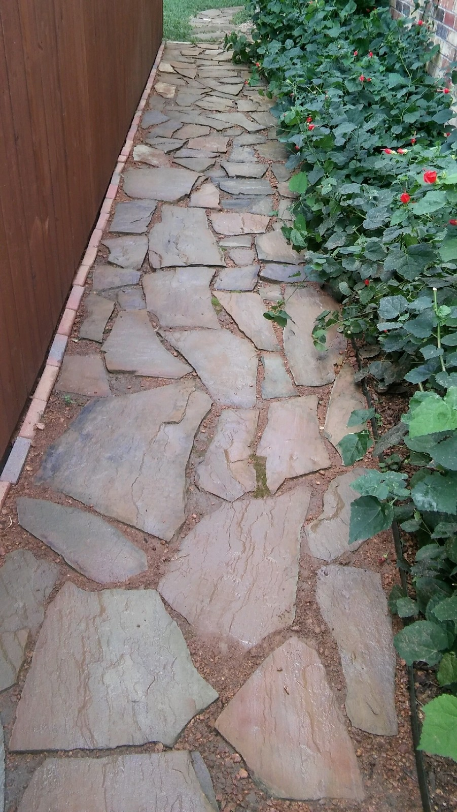 After Stone Walkway Cleaning